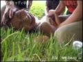 アダルト動画:ゴルフ場キャディ中出し野外●姦